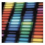 Sunao Inami - Delayed [CD]