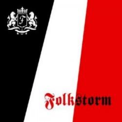 Folkstorm - Folkmusik [CD]