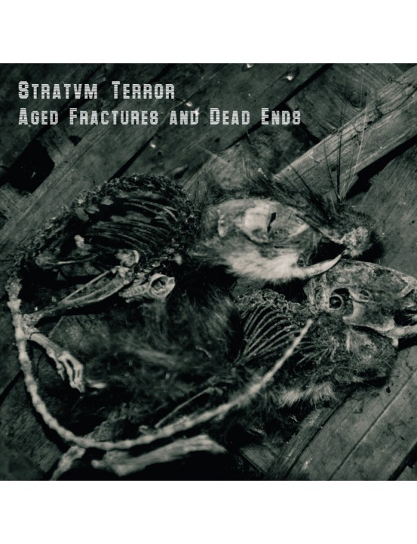 Stratvm Terror [Raison D'être] - Aged Fractures And Dead Ends [C