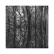 Artificial Memory Trace - Ama_Zone 1: Black Waters [CD]