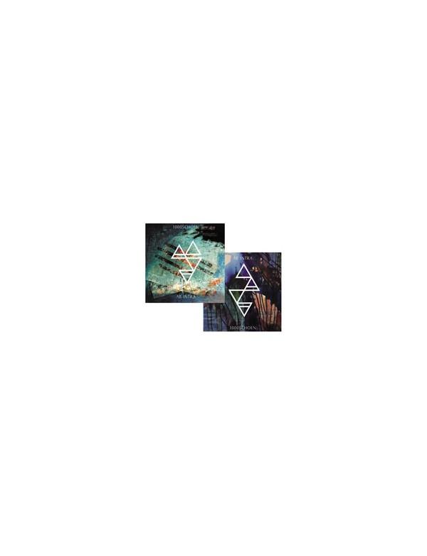 1000SCHOEN / AB INTRA - Split [2CD]